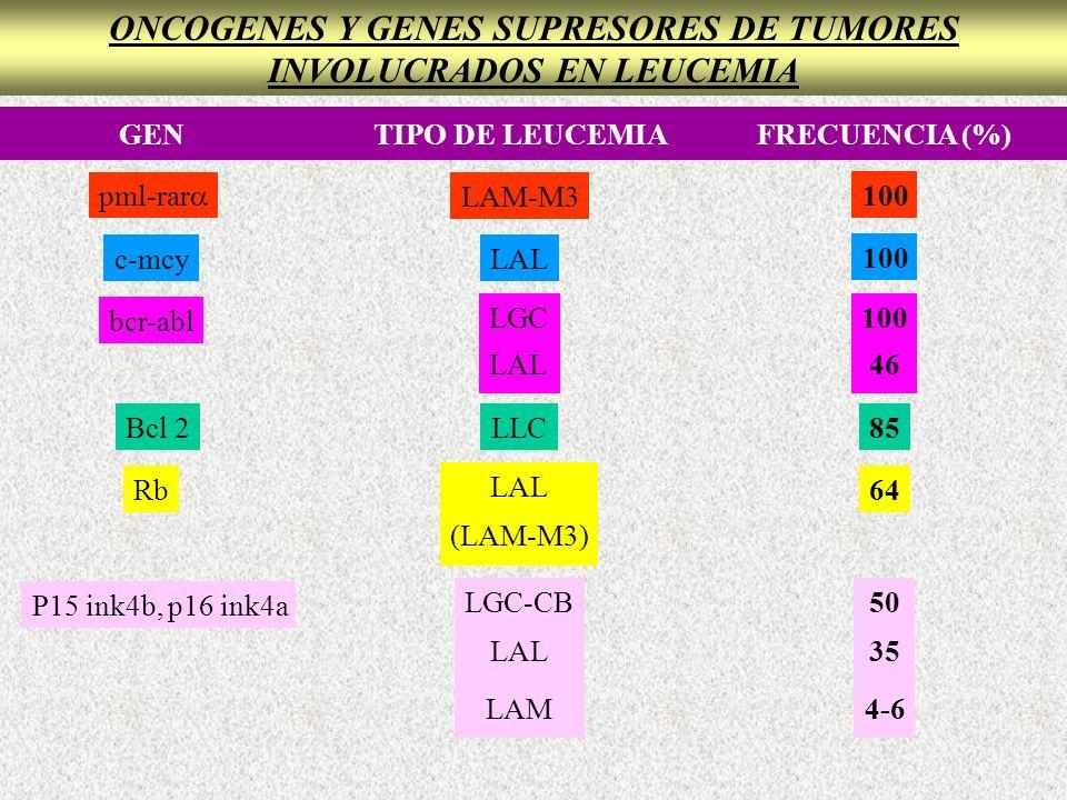 ONCOGENES Y GENES SUPRESORES DE TUMORES INVOLUCRADOS EN LEUCEMIA