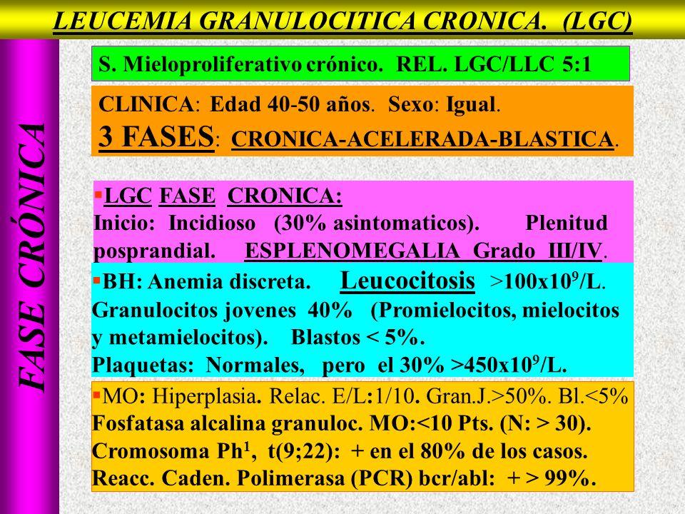 LEUCEMIA GRANULOCITICA CRONICA. (LGC)