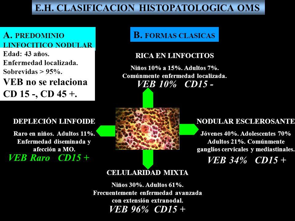E.H. CLASIFICACION HISTOPATOLOGICA OMS