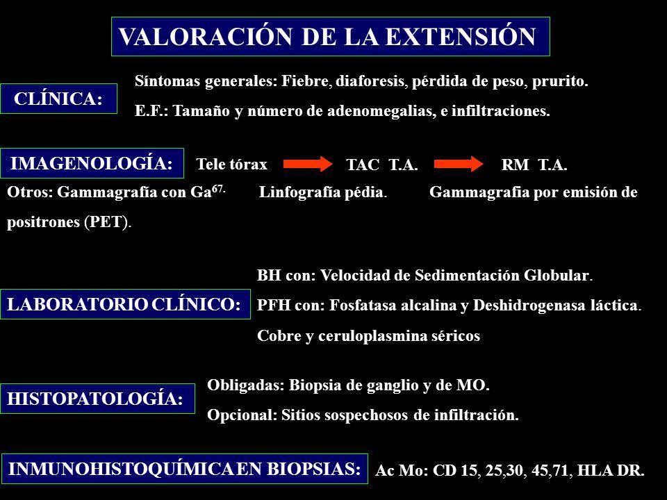 VALORACIÓN DE LA EXTENSIÓN