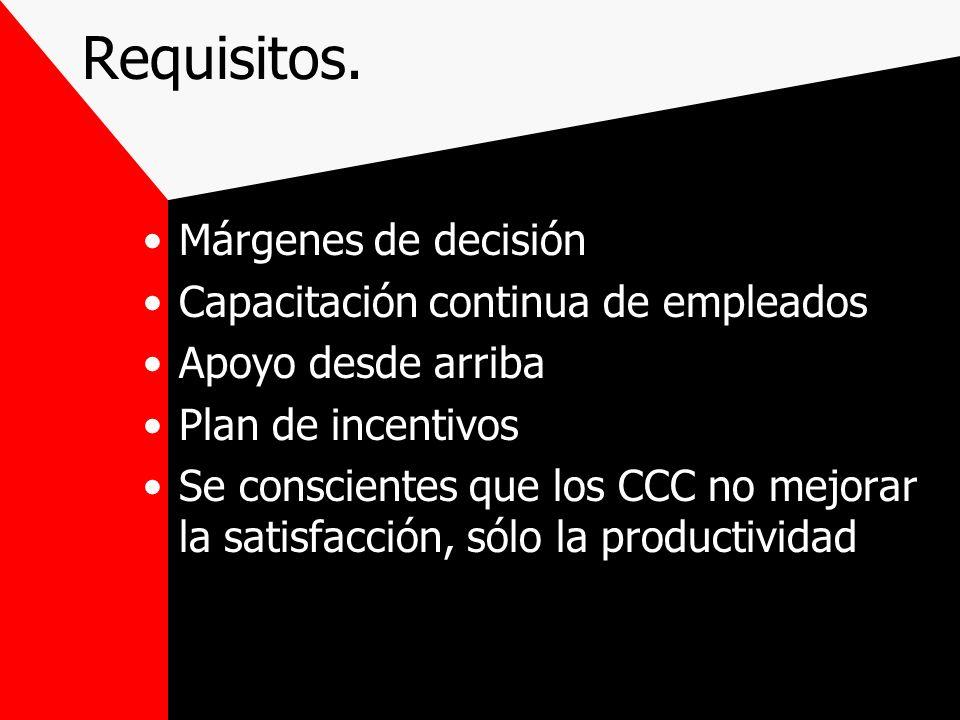 Requisitos. Márgenes de decisión Capacitación continua de empleados