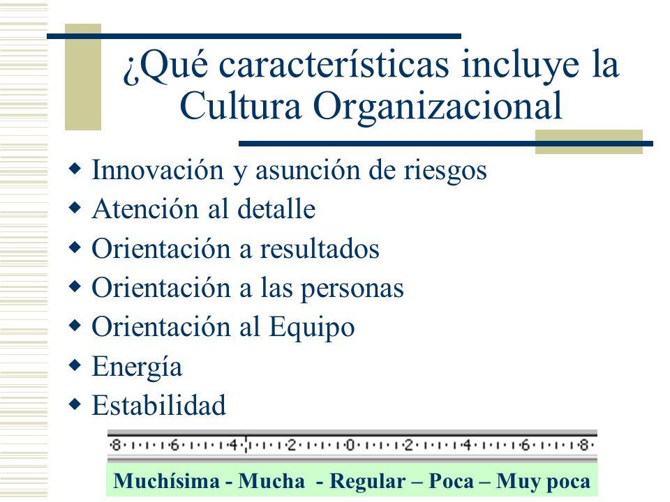 ¿Qué características incluye la Cultura Organizacional