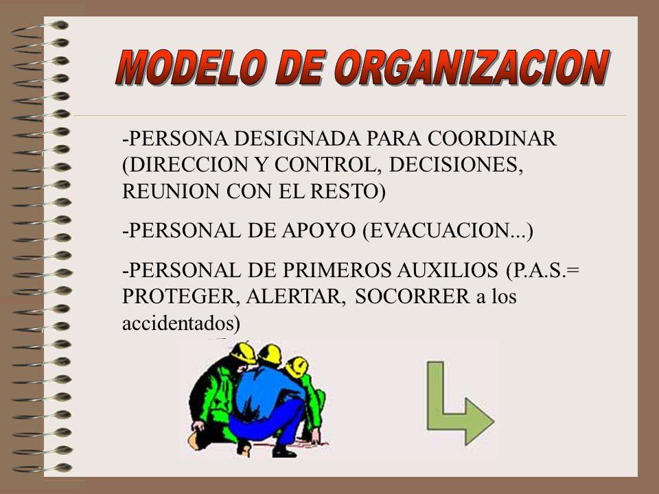 MODELO DE ORGANIZACION
