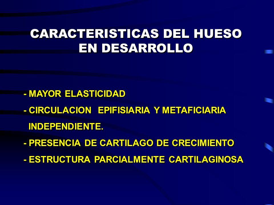 CARACTERISTICAS DEL HUESO EN DESARROLLO