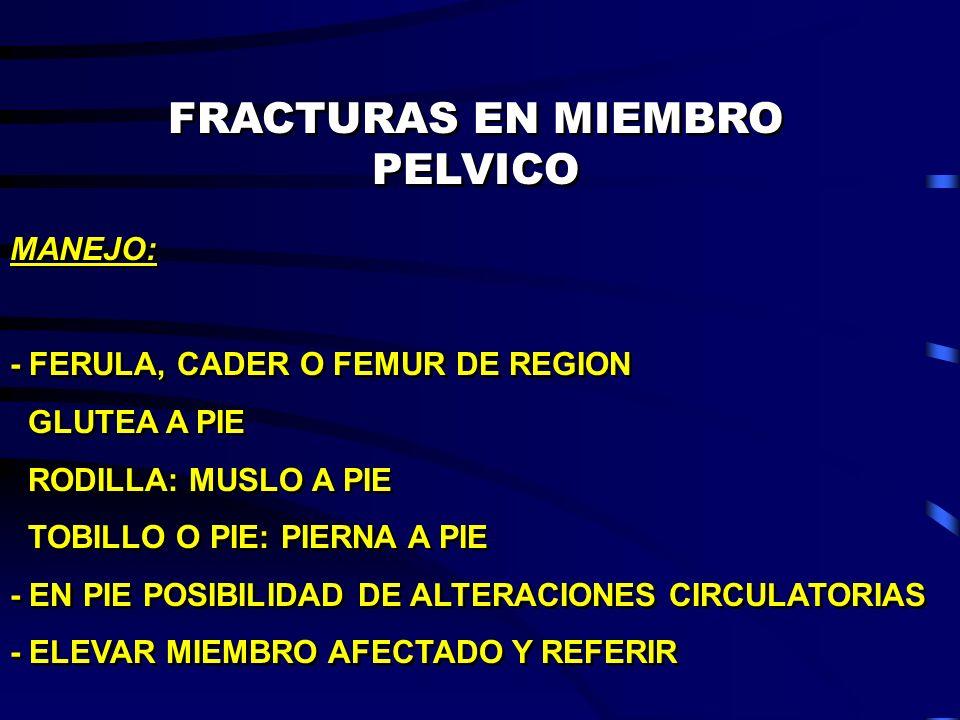 FRACTURAS EN MIEMBRO PELVICO