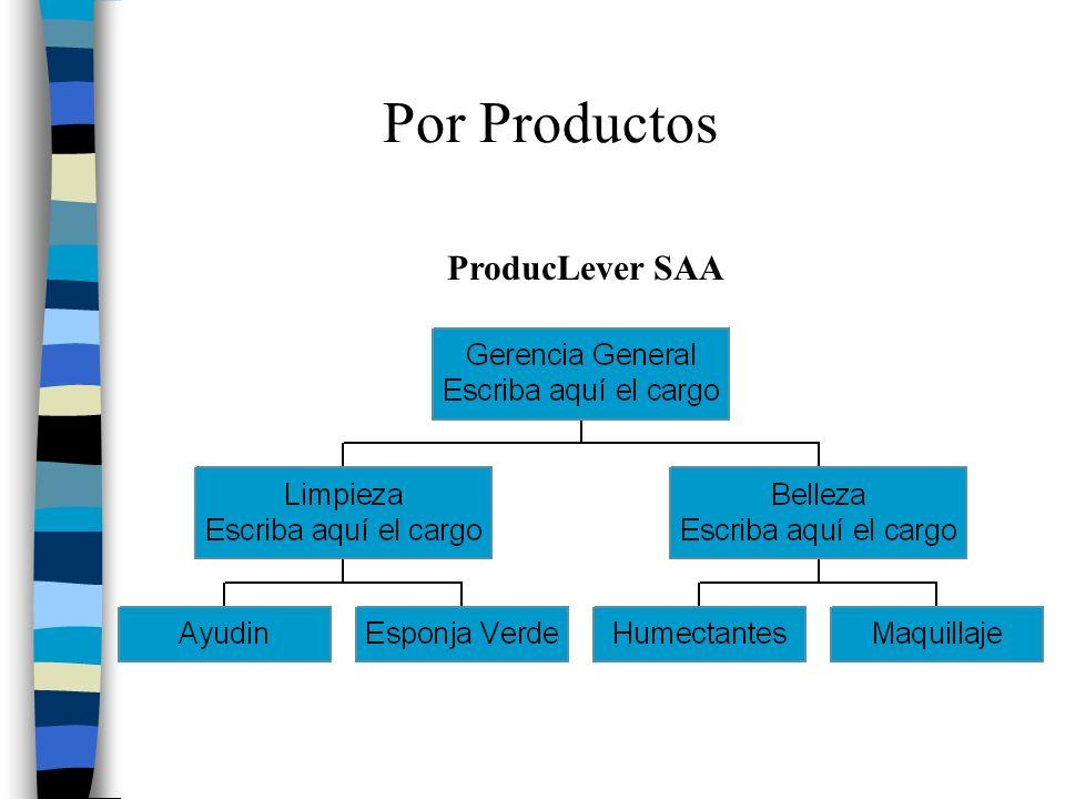 Por Productos ProducLever SAA