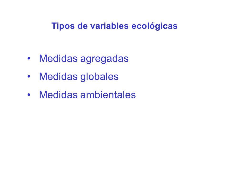 Medidas agregadas Medidas globales Medidas ambientales