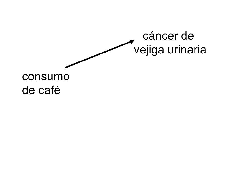cáncer de vejiga urinaria consumo de café