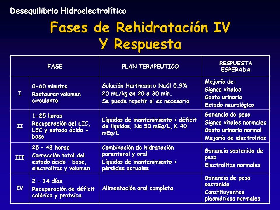 Fases de Rehidratación IV