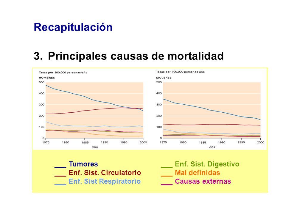 3. Principales causas de mortalidad
