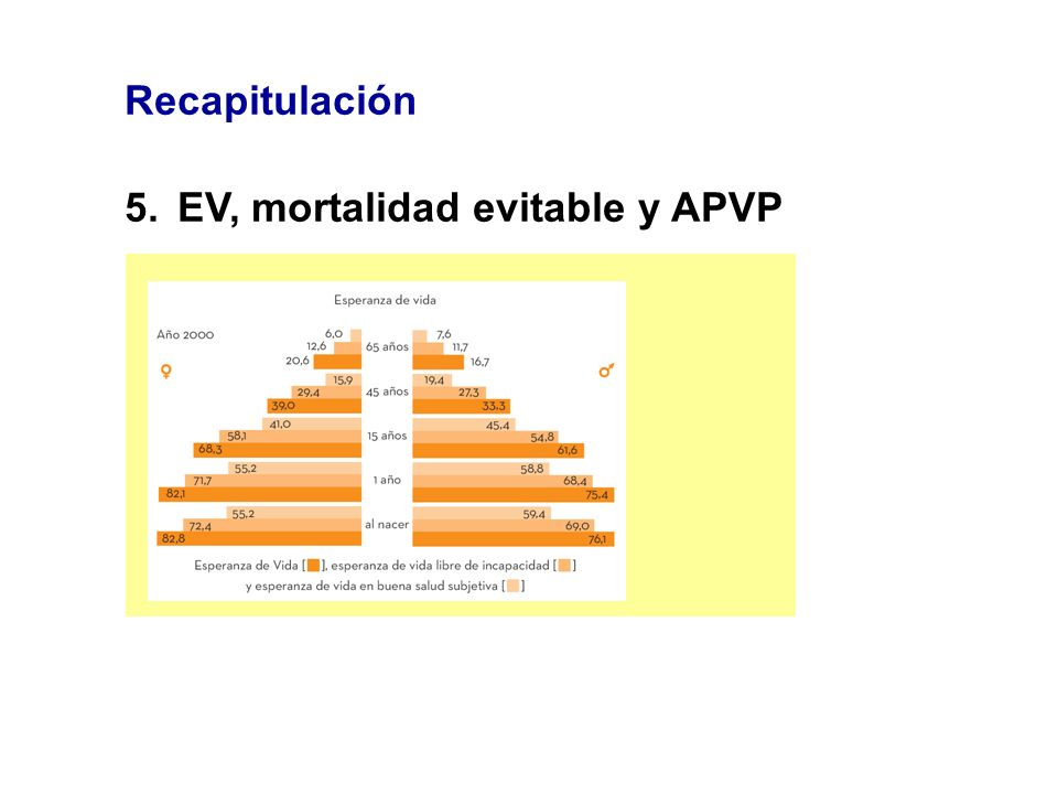Recapitulación 5. EV, mortalidad evitable y APVP