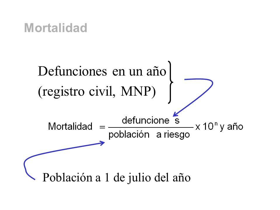 Defunciones en un año (registro civil, MNP) Mortalidad