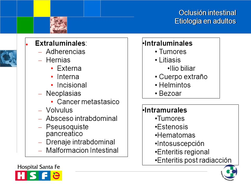 Oclusión intestinal Etiologia en adultos