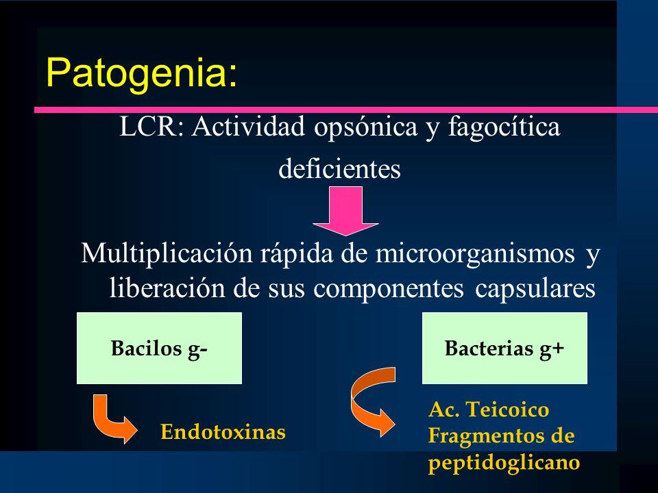 LCR: Actividad opsónica y fagocítica
