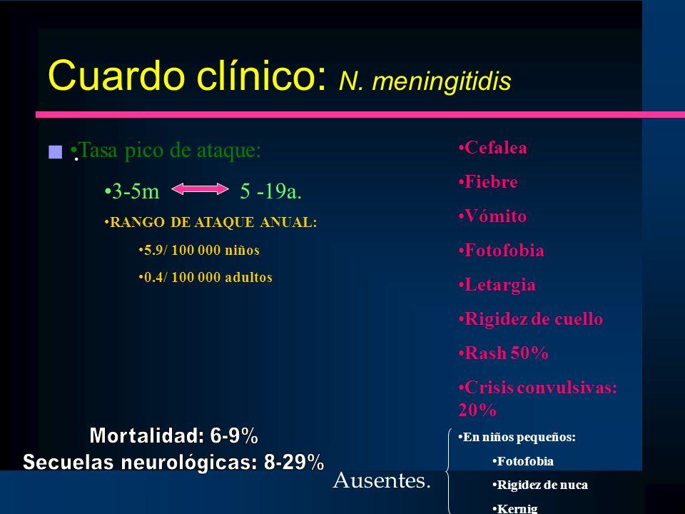 Cuardo clínico: N. meningitidis