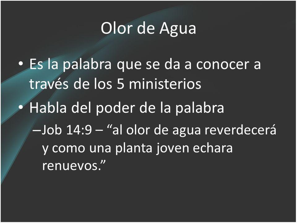 Olor de Agua Es la palabra que se da a conocer a través de los 5 ministerios. Habla del poder de la palabra.