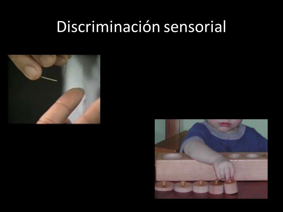 Discriminación sensorial