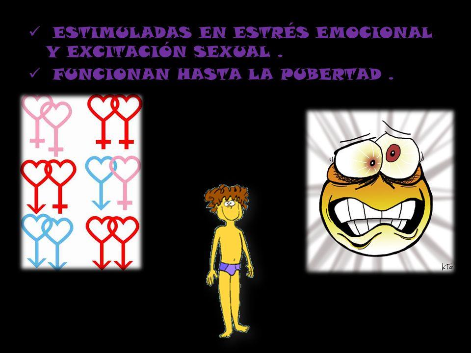 ESTIMULADAS EN ESTRÉS EMOCIONAL Y EXCITACIÓN SEXUAL .