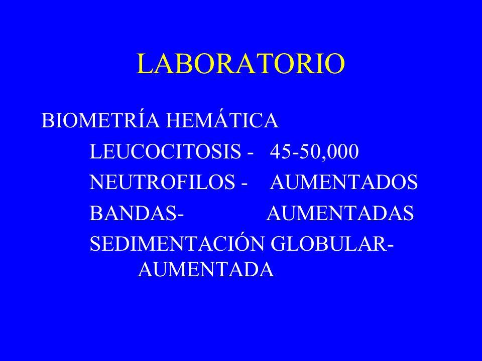 LABORATORIO BIOMETRÍA HEMÁTICA LEUCOCITOSIS - 45-50,000