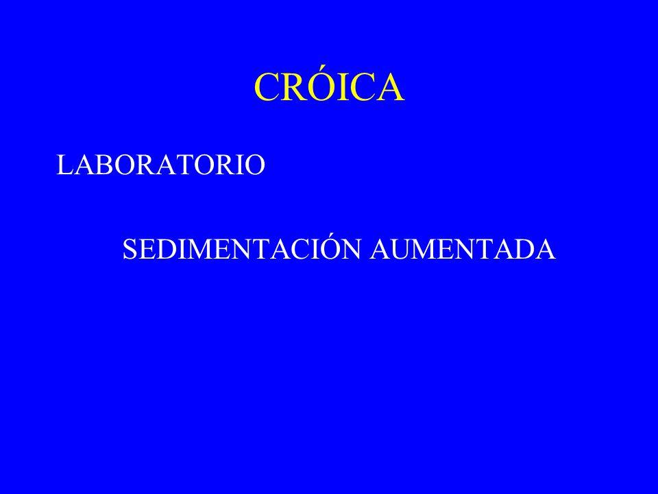 CRÓICA LABORATORIO SEDIMENTACIÓN AUMENTADA