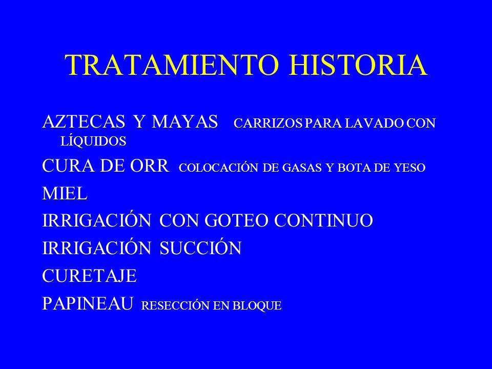 TRATAMIENTO HISTORIA AZTECAS Y MAYAS CARRIZOS PARA LAVADO CON LÍQUIDOS