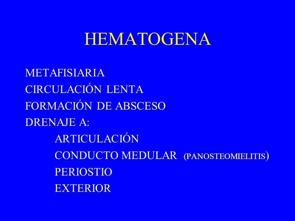 HEMATOGENA METAFISIARIA CIRCULACIÓN LENTA FORMACIÓN DE ABSCESO