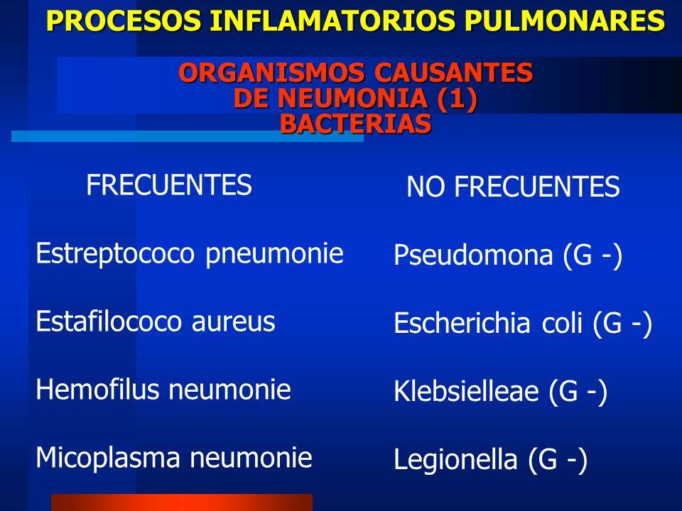 Estreptococo pneumonie Estafilococo aureus Hemofilus neumonie