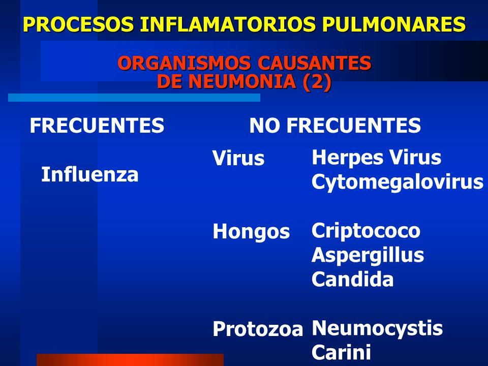 PROCESOS INFLAMATORIOS PULMONARES ORGANISMOS CAUSANTES DE NEUMONIA (2)