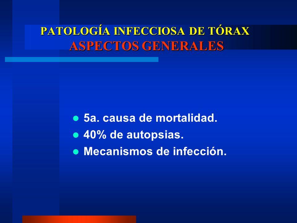 PATOLOGÍA INFECCIOSA DE TÓRAX ASPECTOS GENERALES