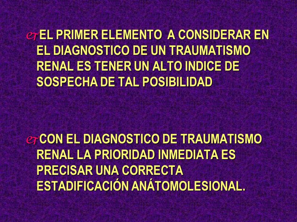 EL PRIMER ELEMENTO A CONSIDERAR EN EL DIAGNOSTICO DE UN TRAUMATISMO RENAL ES TENER UN ALTO INDICE DE SOSPECHA DE TAL POSIBILIDAD