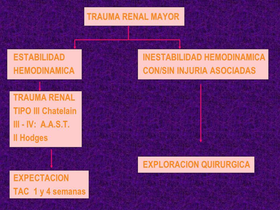 TRAUMA RENAL MAYOR ESTABILIDAD INESTABILIDAD HEMODINAMICA. HEMODINAMICA CON/SIN INJURIA ASOCIADAS.