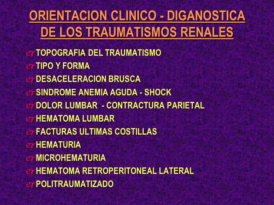 ORIENTACION CLINICO - DIGANOSTICA DE LOS TRAUMATISMOS RENALES