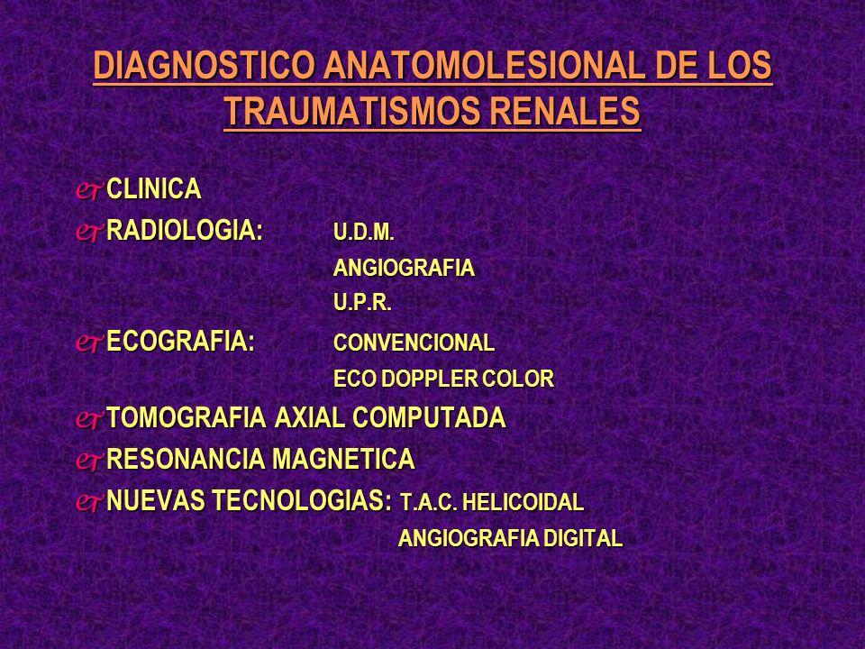 DIAGNOSTICO ANATOMOLESIONAL DE LOS TRAUMATISMOS RENALES