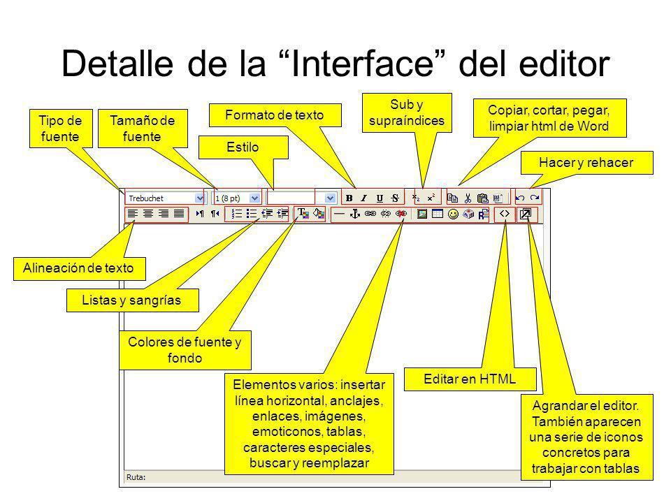 Detalle de la Interface del editor