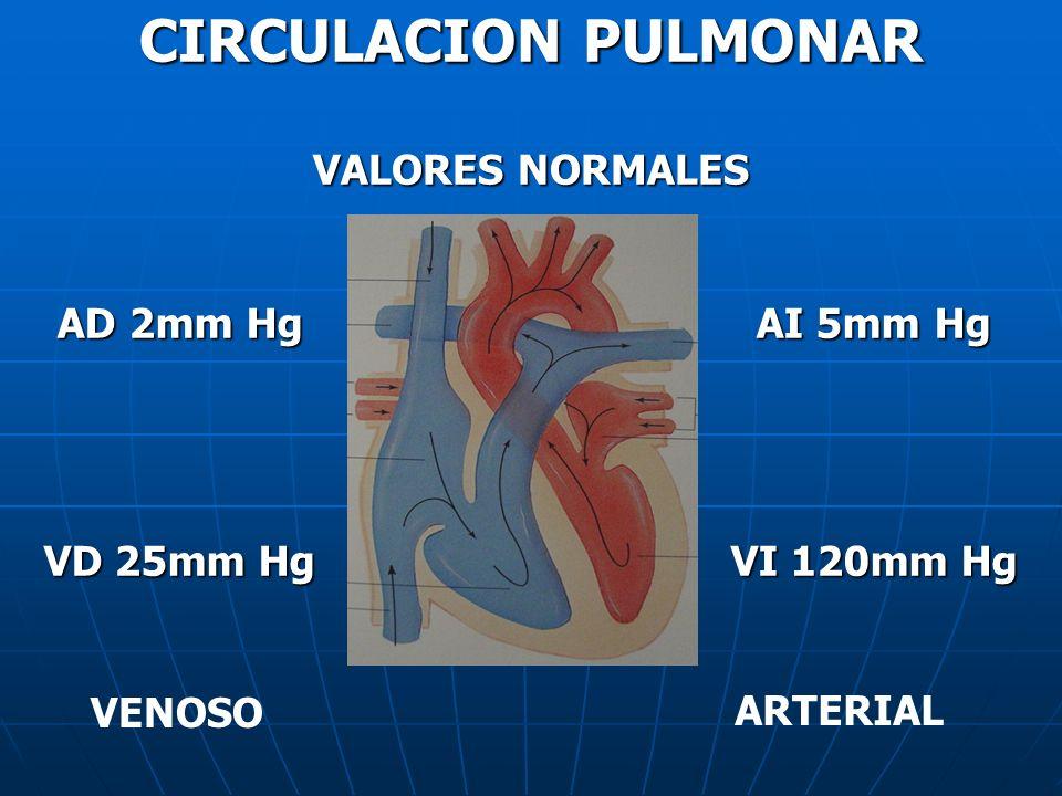 CIRCULACION PULMONAR VALORES NORMALES
