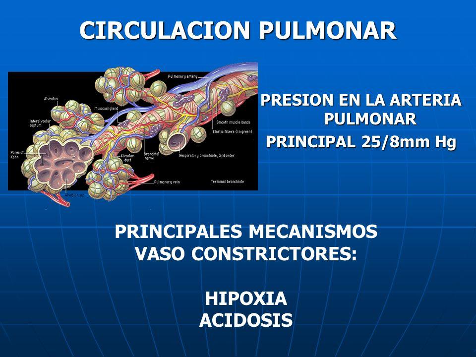 PRESION EN LA ARTERIA PULMONAR PRINCIPALES MECANISMOS