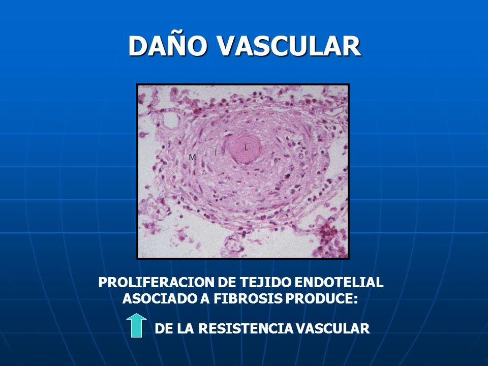 PROLIFERACION DE TEJIDO ENDOTELIAL ASOCIADO A FIBROSIS PRODUCE: