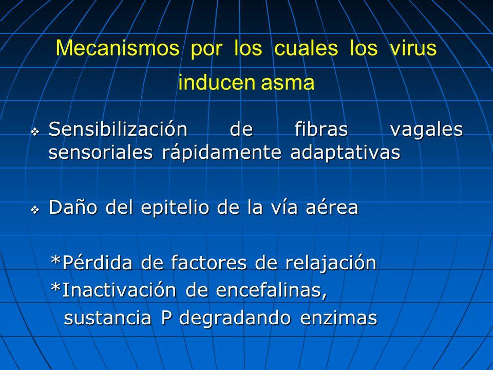 Mecanismos por los cuales los virus inducen asma