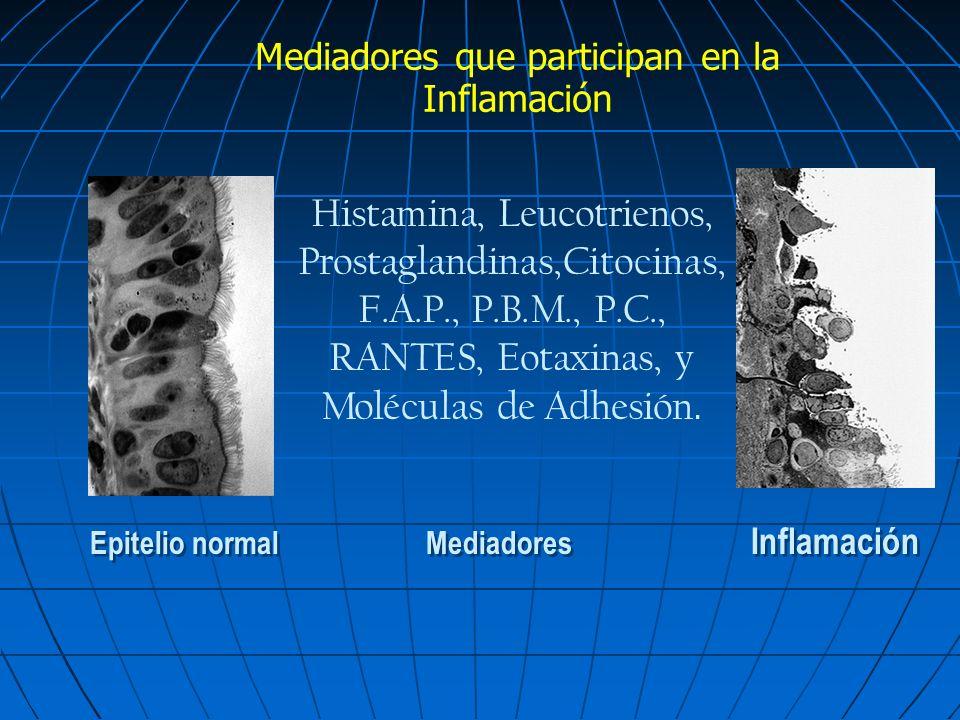 Mediadores que participan en la Inflamación