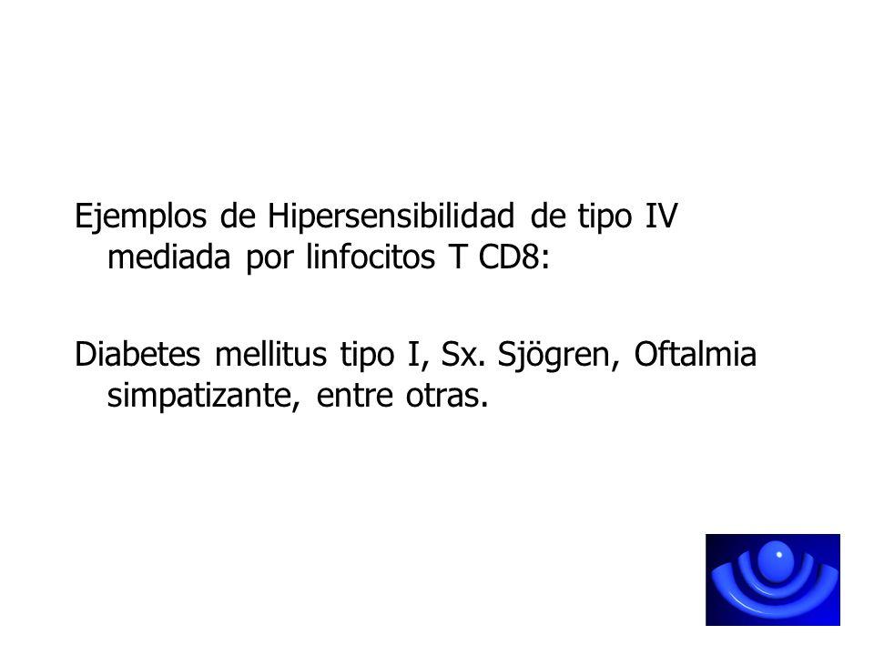 Ejemplos de Hipersensibilidad de tipo IV mediada por linfocitos T CD8: