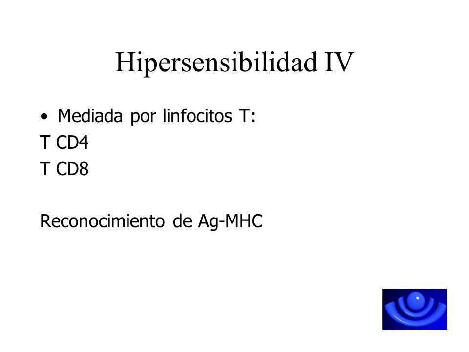 Hipersensibilidad IV Mediada por linfocitos T: T CD4 T CD8