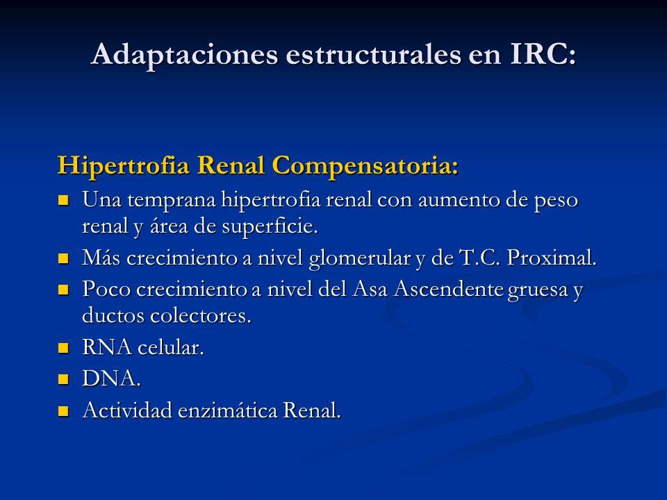 Adaptaciones estructurales en IRC: