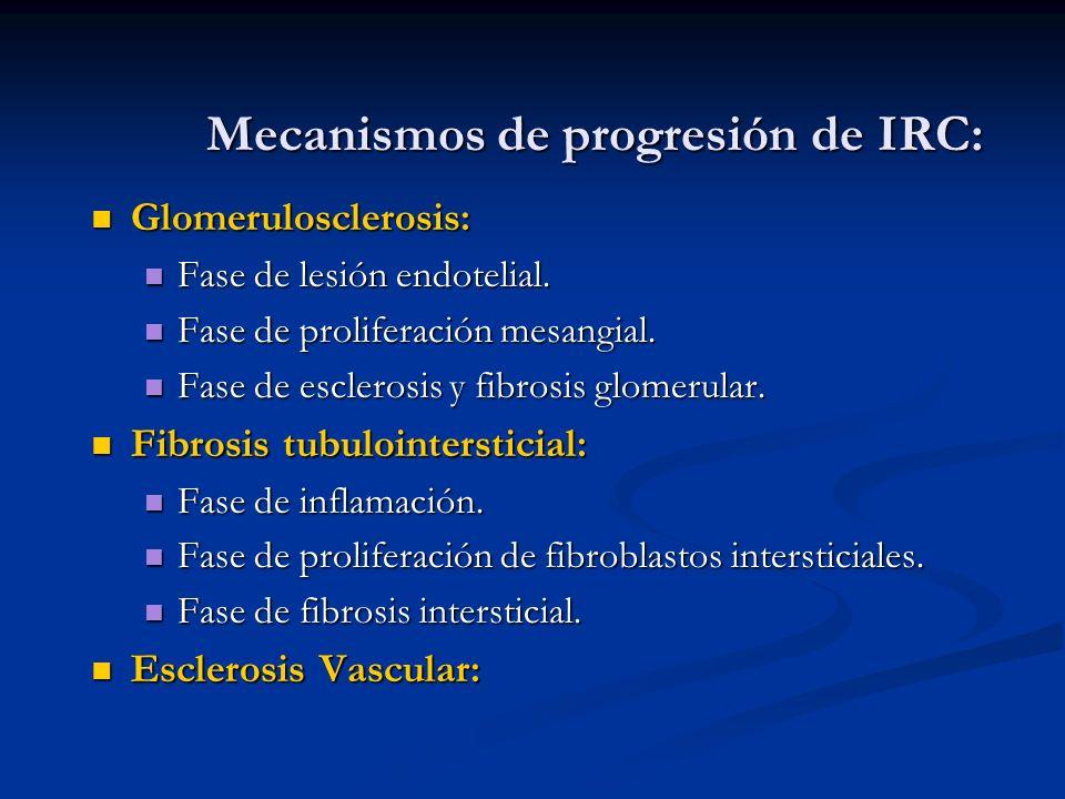 Mecanismos de progresión de IRC: