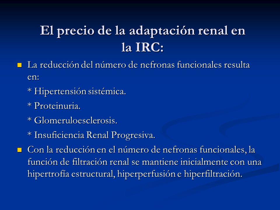 El precio de la adaptación renal en la IRC: