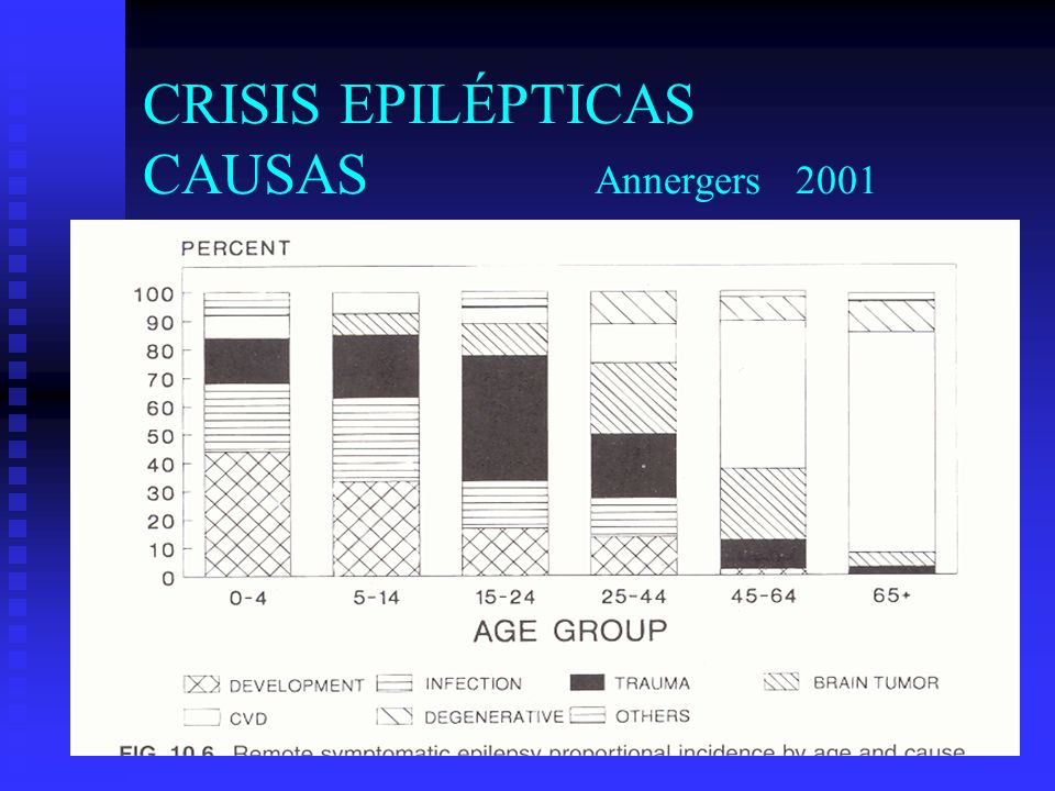 CRISIS EPILÉPTICAS CAUSAS Annergers 2001