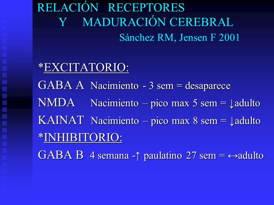 RELACIÓN RECEPTORES Y MADURACIÓN CEREBRAL Sánchez RM, Jensen F 2001