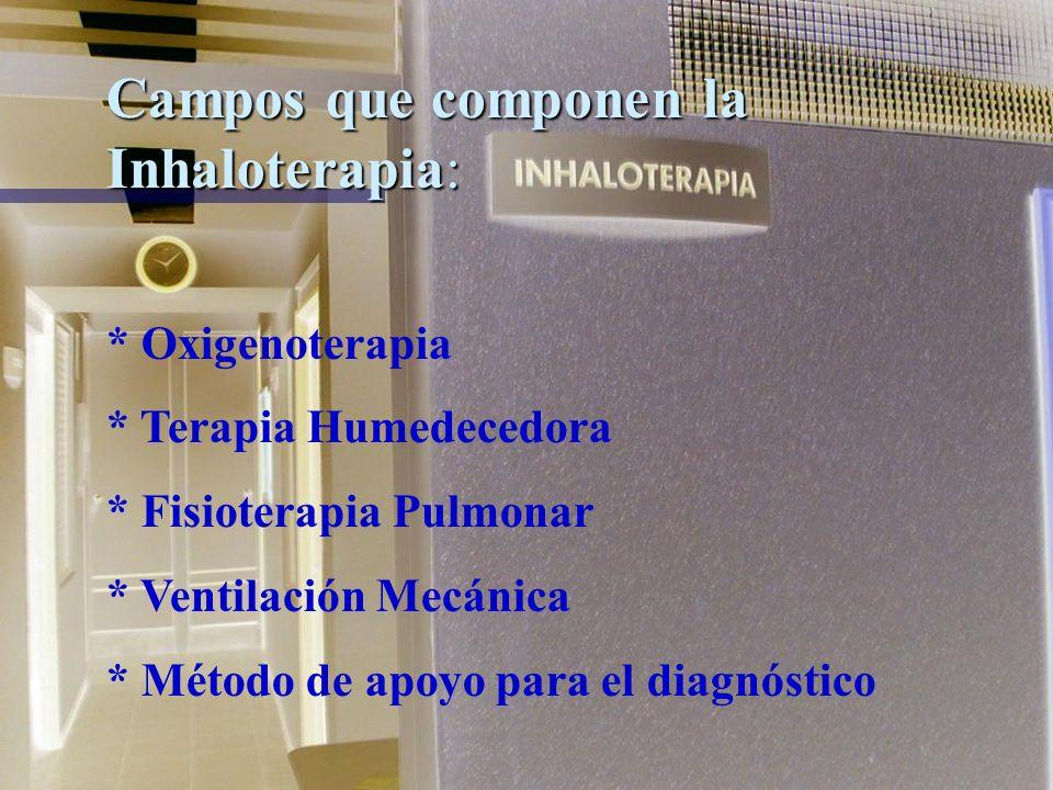 Campos que componen la Inhaloterapia: