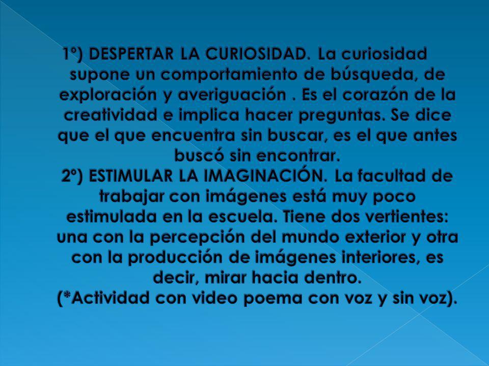 1º) DESPERTAR LA CURIOSIDAD