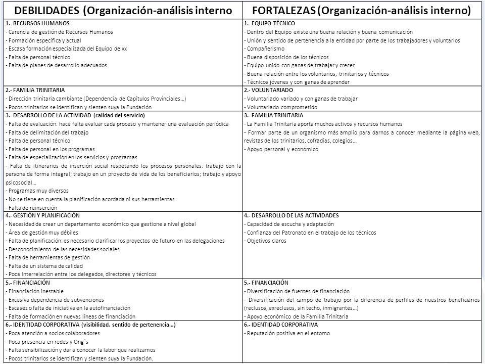 DEBILIDADES (Organización-análisis interno