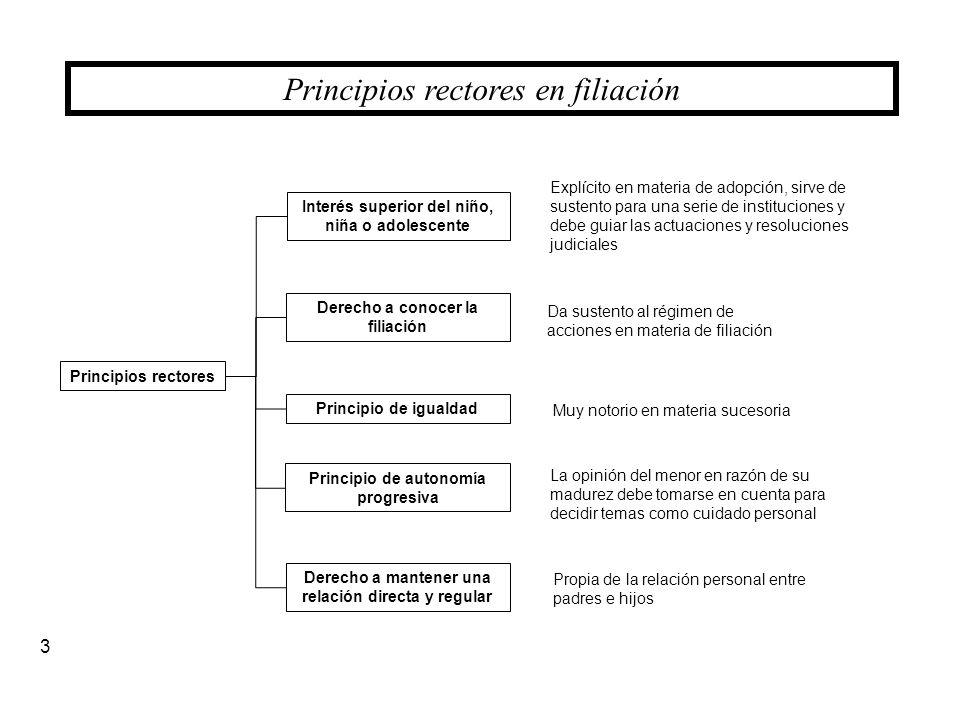 Principios rectores en filiación